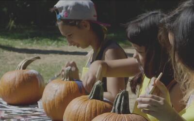 El zoológico, una gran opción para celebrar el fin de semana de Halloween