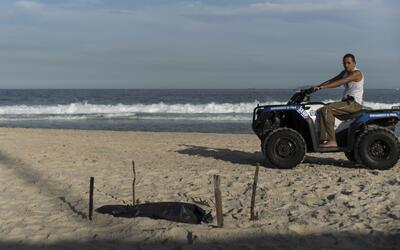 Hallan restos de un cuerpo mutilado en playa de Brasil