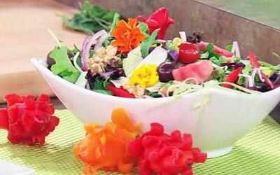 Ensaladas fescas, coloridas y primaverales de la Chef Minerva