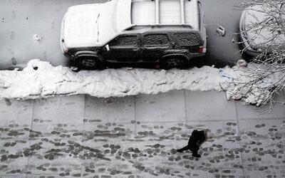 ¿Cuál es el balance que ha dejado la tormenta invernal en Nueva Jersey?