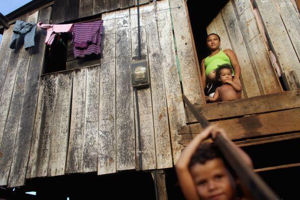 Organizaciones ambientalistas y de derechos humanos, entre ellas Surviva...