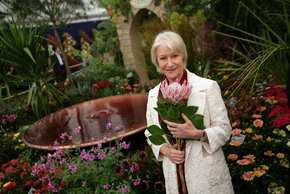 Otras son amantes de la jardinería, las plantas y las flores como...