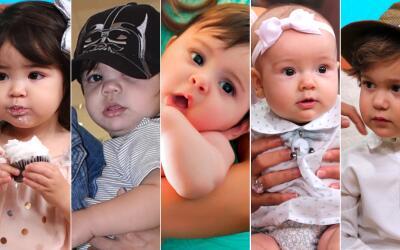 bebés talentos de Univision