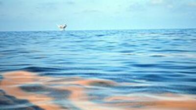 BP trata de lavar su imagen con indemnizaciones e inversión en investiga...