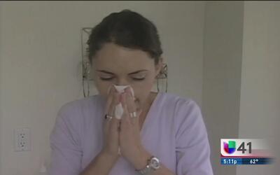 ¿Por qué hay más alergias en esta temporada y cómo se pueden prevenir?
