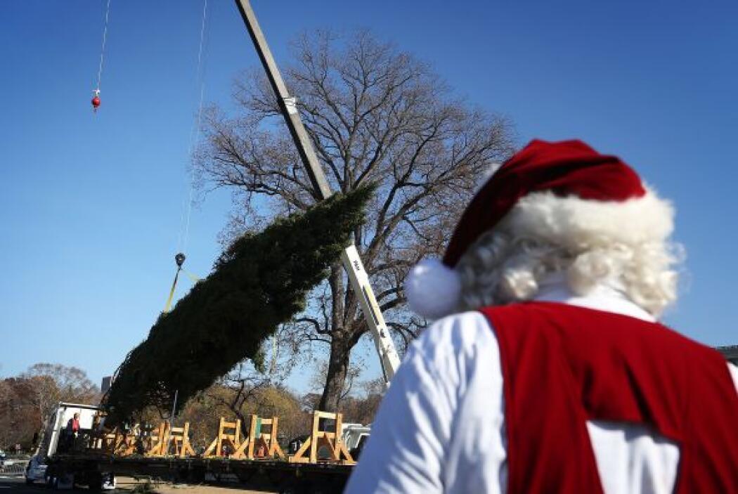 La época navideña comienza a sentirse ya y con ello se continúa la tradi...