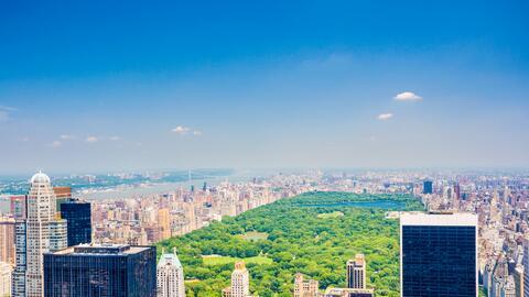 Te compartimos los planes que las guías de Nueva York olvidaron r...