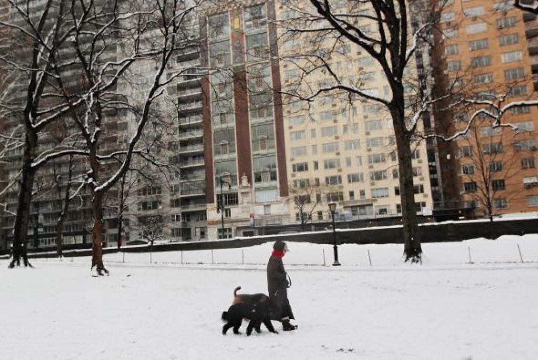 El reporte del Servicio Nacional del Clima señaló nieve en 49 de los 50...