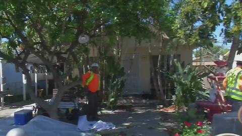 Contaminación de plomo cierra los jardines de dos escuelas