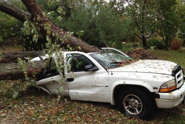 'Tu Cámara' en zona devastada. Un árbol destrozó esta camioneta luego de...