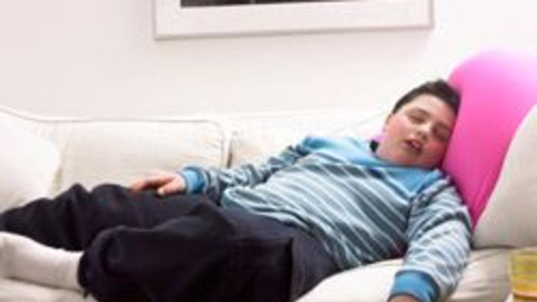 La obesidad infantil en los Estados Unidos b20a10155424406ca98e8c731b7bd...
