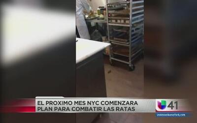 Inspeccionarán vecindarios plagados de ratas en nueva cruzada contra los...