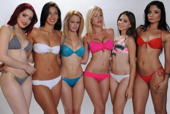 Candidatas a Miss Copa Oro