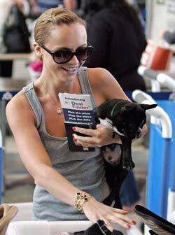'Ramon' es el bulldog francés negro que Christina Ricci trata com...