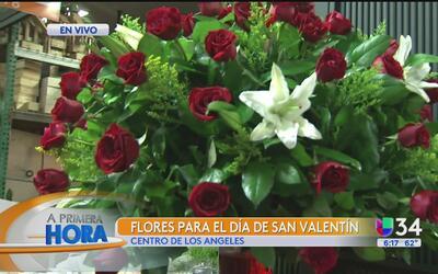 ¿Necesitas flores para San Valentín?