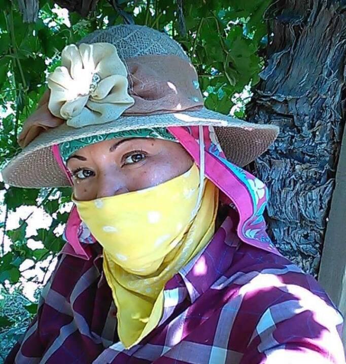 Campesina que trabaja en la cosecha de uva en Bakersfield.