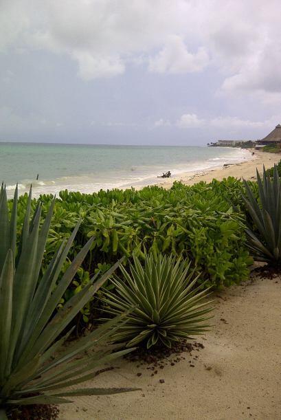 Las paradisiacas playas de Cancún fueron el marco perfecto para la celeb...