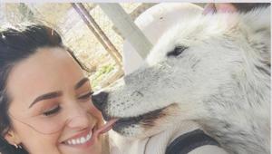 Demi Lovato adfasf.png