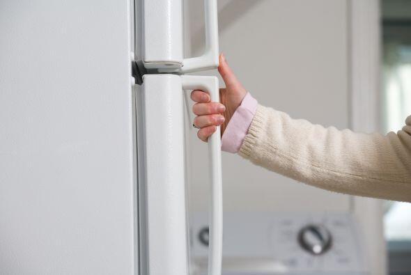 Podría parecer innecesario pero la puerta del refrigerador guarda gérmen...