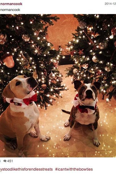Kaley Cuoco le puso atuendos navideños a sus perritos y los retrató fren...