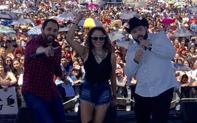 El Free-guey show - San José