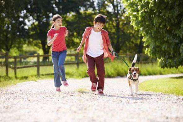 El deporte ayuda a que un niño sea más ágil en sus respuestas, su respue...
