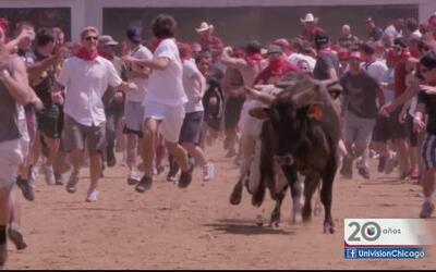 ¿Encierro de toros en Chicago?