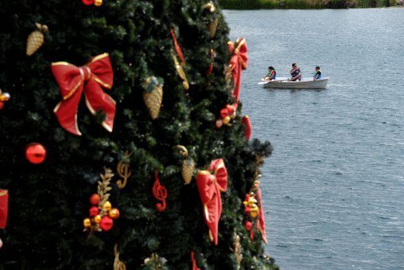 Esta navidad, en todos los hogares no puede faltar el Árbol de Na...