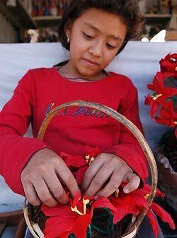 Gabriela Hernández de 8 años de edad trabaja en un arreglo...