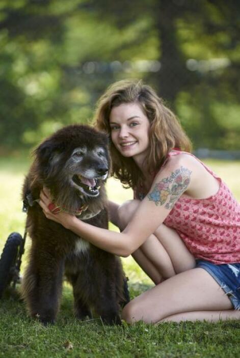 La trasladaron a un santuario de animales en Star Prairie, Wisconsin, en...