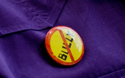 Pese a las campañas de rechazo, auditorías demuestran que el bullying pe...