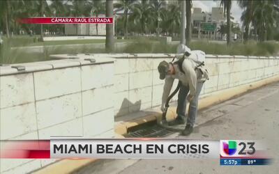 Aumenta la zona de peligro de transmisión del zika en Miami Beach