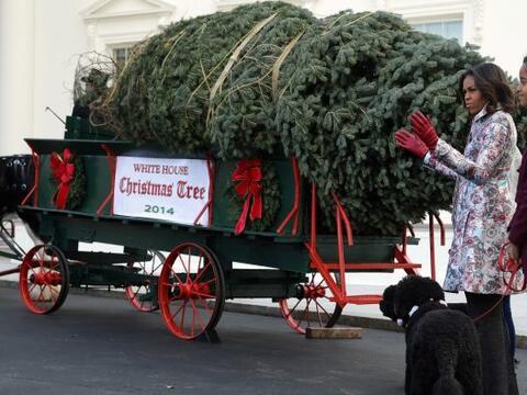 Michelle Obama y sus hijas recibieron el pino que adornará el int...