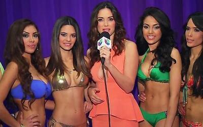 Conoce los equipos de Alicia y de Denise en Nuestra Belleza Latina