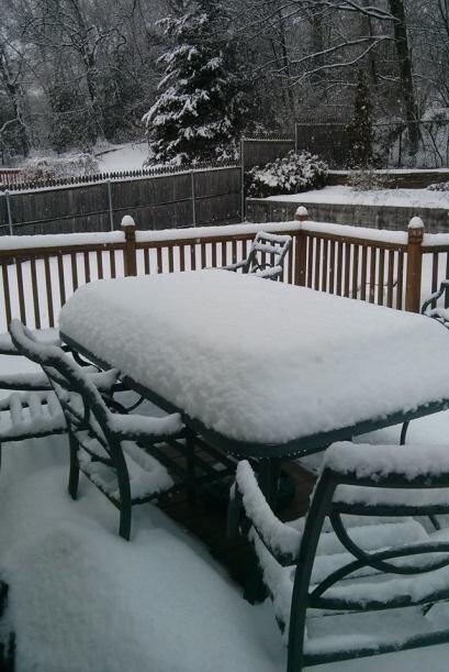 Una imagen más enviada por Sandra Garro desde Rhode Island.