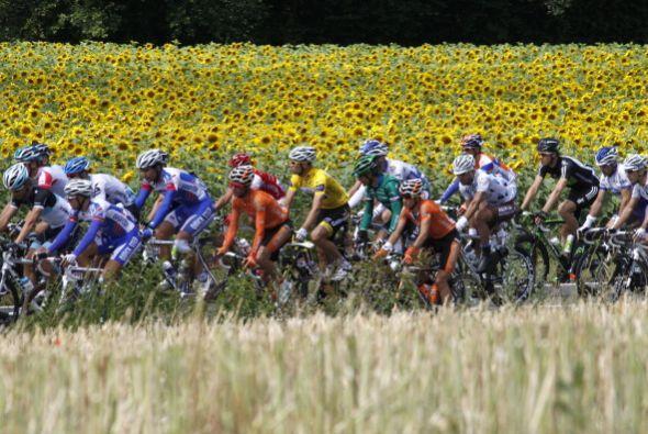 La séptima etapa del Tour de Francia fue de 215 kilómetros y se disputó...