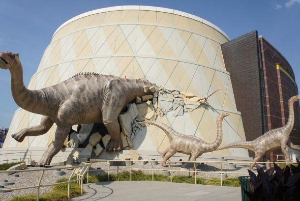 MUSEO DE LOS NI'OS DE INDIANÁPOLIS - Con 472.900 pies cuadrados y cinco...