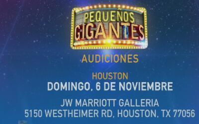 Pequeños Gigantes realizará audiciones en Houston este domingo 6 de novi...