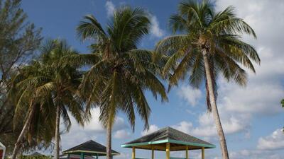 Las playas de La Riviera Maya te dejarán embelesado.