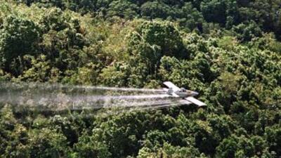 Avioneta de Fuerzas Armadas se desplomó en La Paz. (archivo)