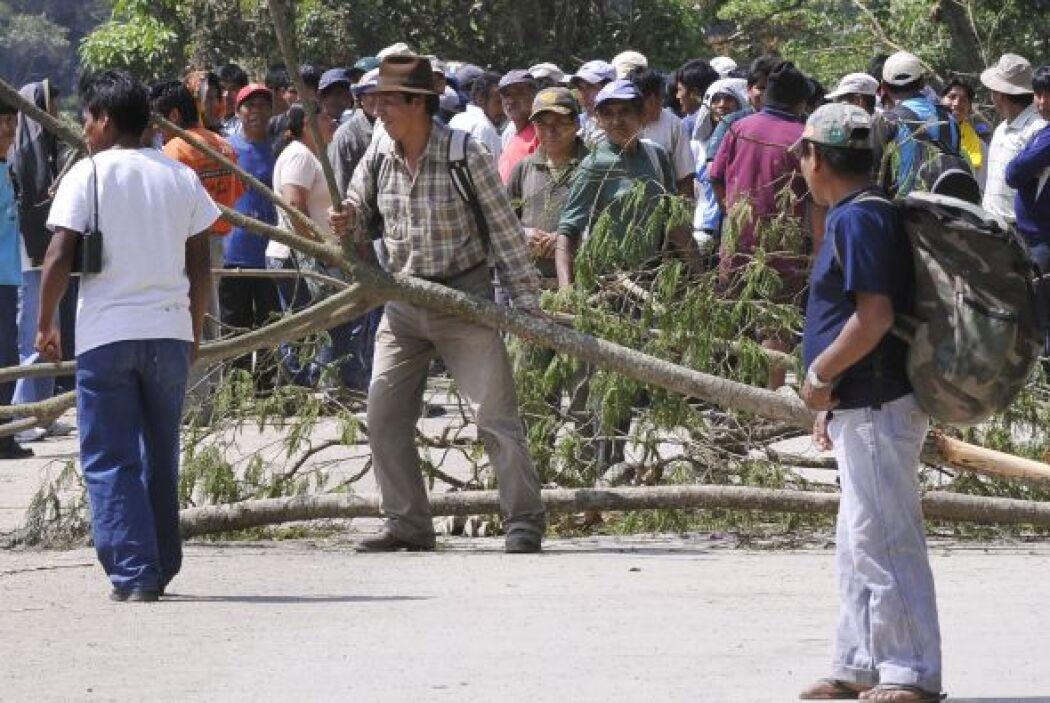 Productores de coca de los Yungas, región agrícola cercana a La Paz, cor...