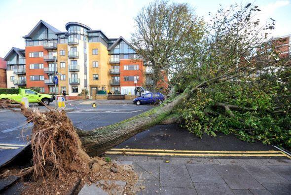 Dos personas murieron este lunes tras caerles encima sendos árboles como...