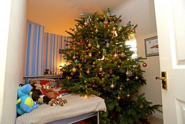 """De hecho M & S  lo  nombró  """"el árbol más imponente de Navidad en el Rei..."""