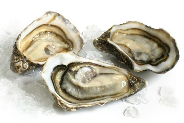 Ostras  Las ostras por su alto contenido en zinc ayudan de manera direct...