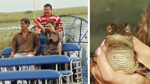 Maity Interiano se fue a los Everglades a conocer los animales típicos d...