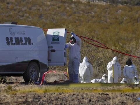 Alrededor de 33, 797 muertos ha dejado la narcoviolencia en Méxic...