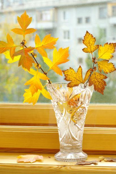 Ramo de hojas. Un simple jarrón de vidrio puede convertirse en el atril...