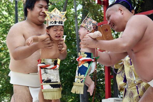 En el Tokyo's Irugi Shrine los luchadores ayudan a los bebés a re...