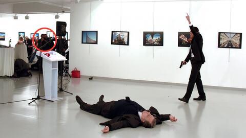 En video: el fotógrafo que fue a una exposición y acabó captando el ases...