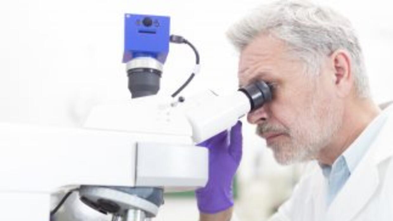 A través de la investigación se ha identificado una mutación en la enzim...